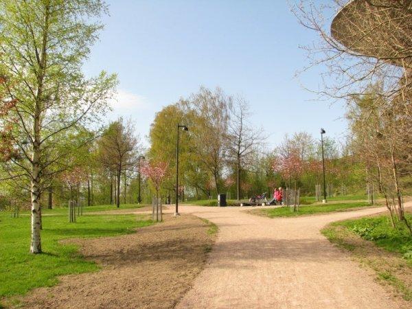kirsikkapuisto_i.jpg